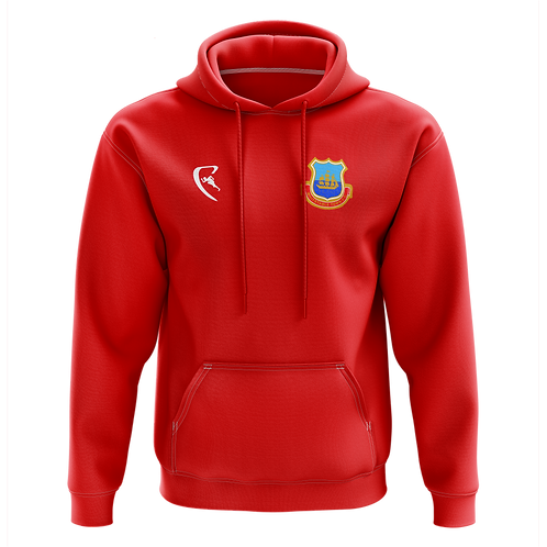 WTFC Classic One Colour Hoodie