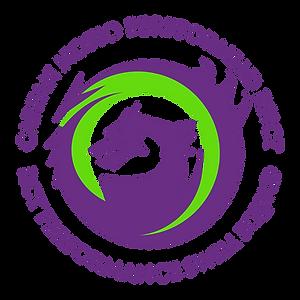 RCT Performance Swim Icon.png