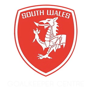 South Wales Goalkeepers Icon.png