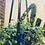"Thumbnail: ""Hung Studio"" Leather Plant Hangers"