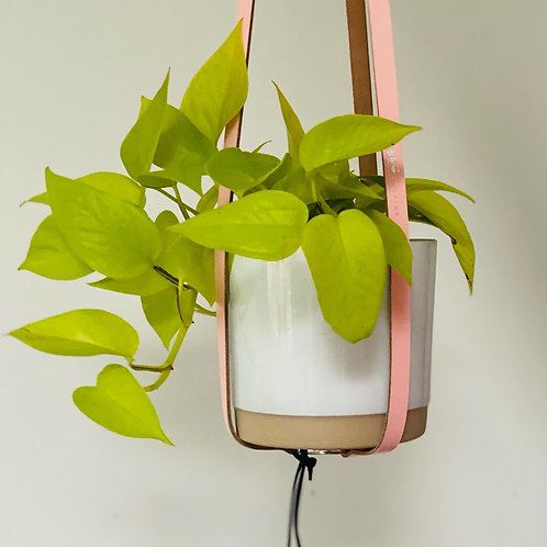 Hung Studio Plant Hanger *Leather