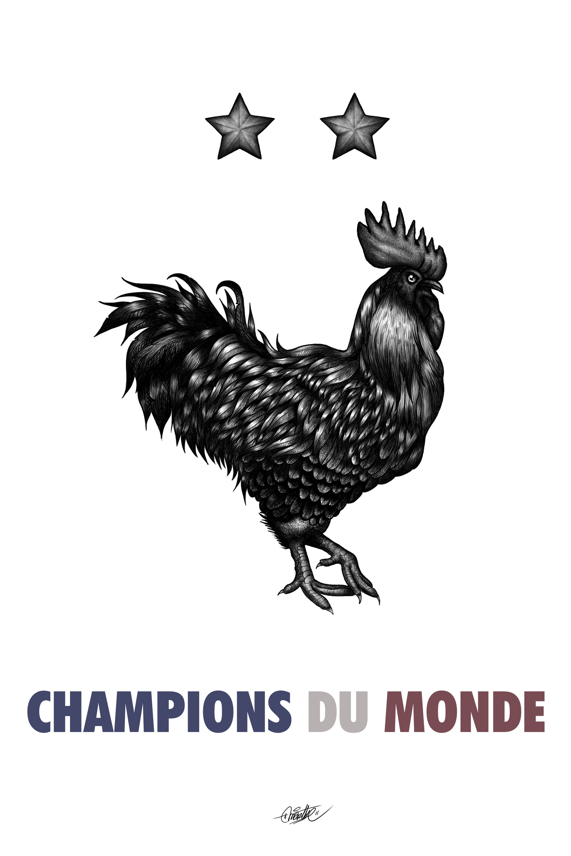 Coq champion final.jpg