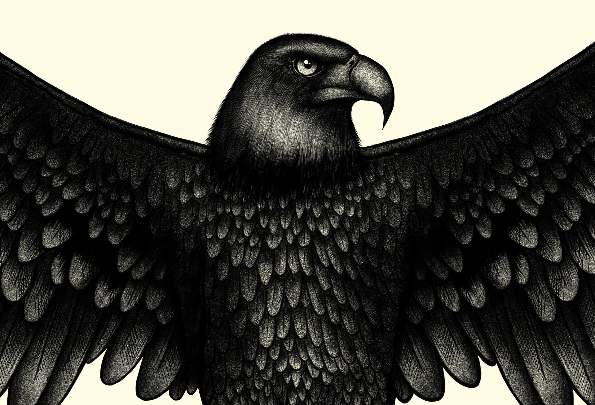 Eagle copie tete.jpg