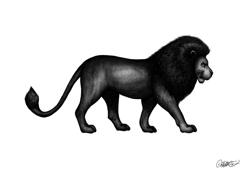 lion final fond blanc.jpg