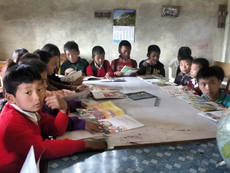 A perspective on impact evaluation of school libraries
