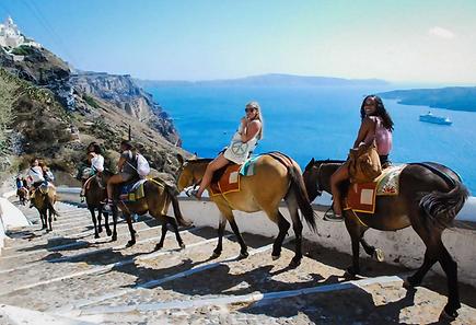 Санторини!!! Эта экскурсия не оставит равнодушным ни детей, ни взрослых. Вы увидите прелести Кальдеры, крошечные домики, которые приютились на отвесных скалах, церкви с голубыми куполами