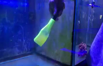 JustFish debut's TankTools Vacuum