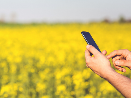 Top 3 marketing tips for agri-businesses