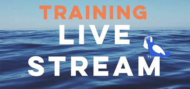 MDS 3.0 Training live stream webinar web