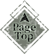footer_pagetop.png