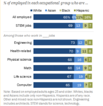The Racial Disparities in STEM Careers