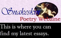 Snakeskin - web.jpg
