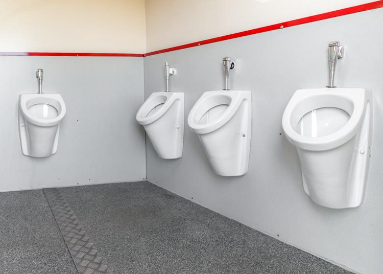 WC-Wagen gross