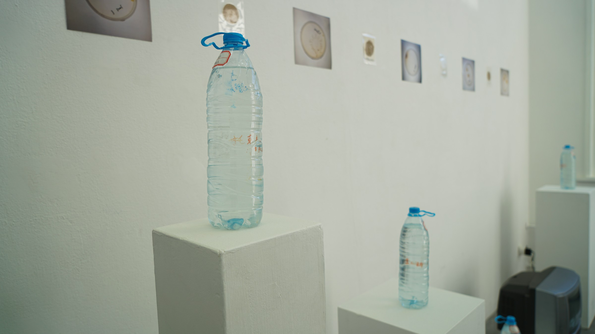 exhibition photo1
