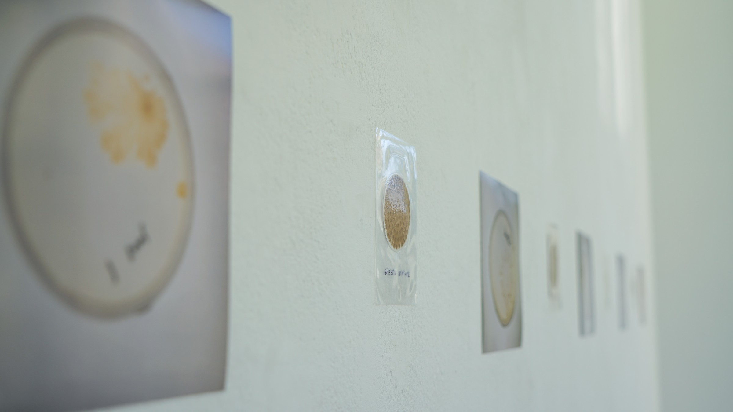 exhibition photo2
