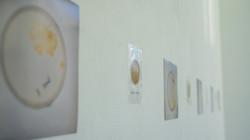exhibition photo2