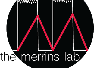 The Merrins Lab is OPEN for research!