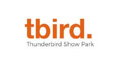 Tbird.jpg