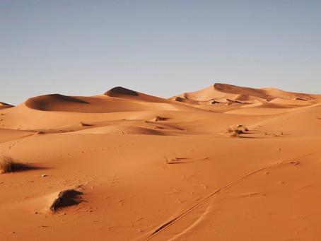 El desierto: el lugar donde la misericordia de Dios se manifiesta