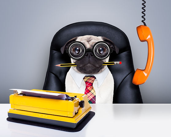 office-worker-boss-dog-510785414_7905x63
