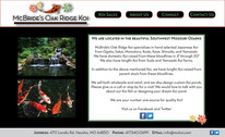 Home page for a website created with Adobe Illustrator