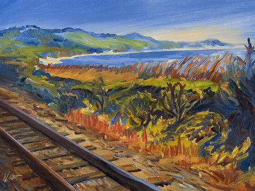 12x16 archival print Train Track Overlooking the Bluff
