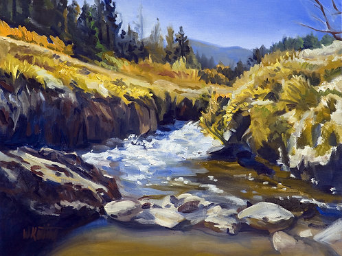 12x16 archival print Western Landscape: Hot Springs in Sequoia National Forest