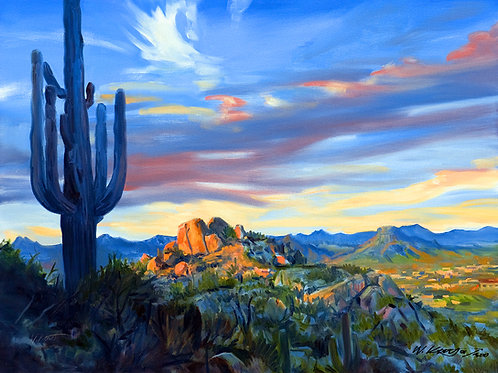 12x16 archival print View Of Scottsdale Arizona From Pinnacle Peak