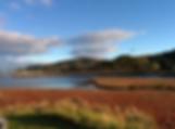 Cygnet, Tasmania.png