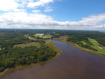 drone pic of river and greenspaces.jpg