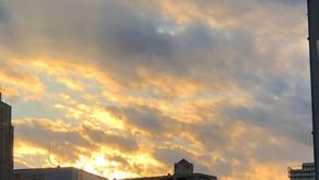 明日、11月11日(水)、明後日11月12日(木)は休業日となります。練馬駅近・駅前の美容室シフィ練馬/sihui
