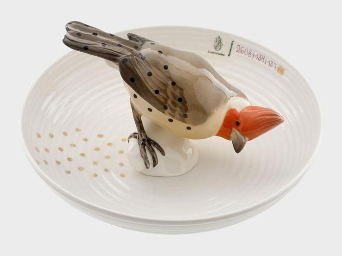 Bowl with bird