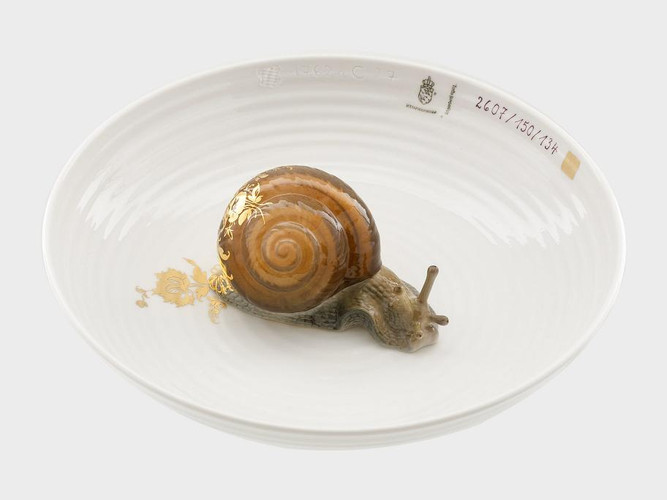 Bowl with snail