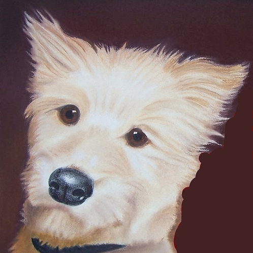 "Head&Neck Pet Portrait 20""x14"" (with background)"