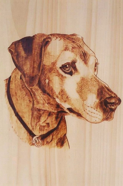 "Head&Neck, Wood-burned Pet Portrait 16""x12"""