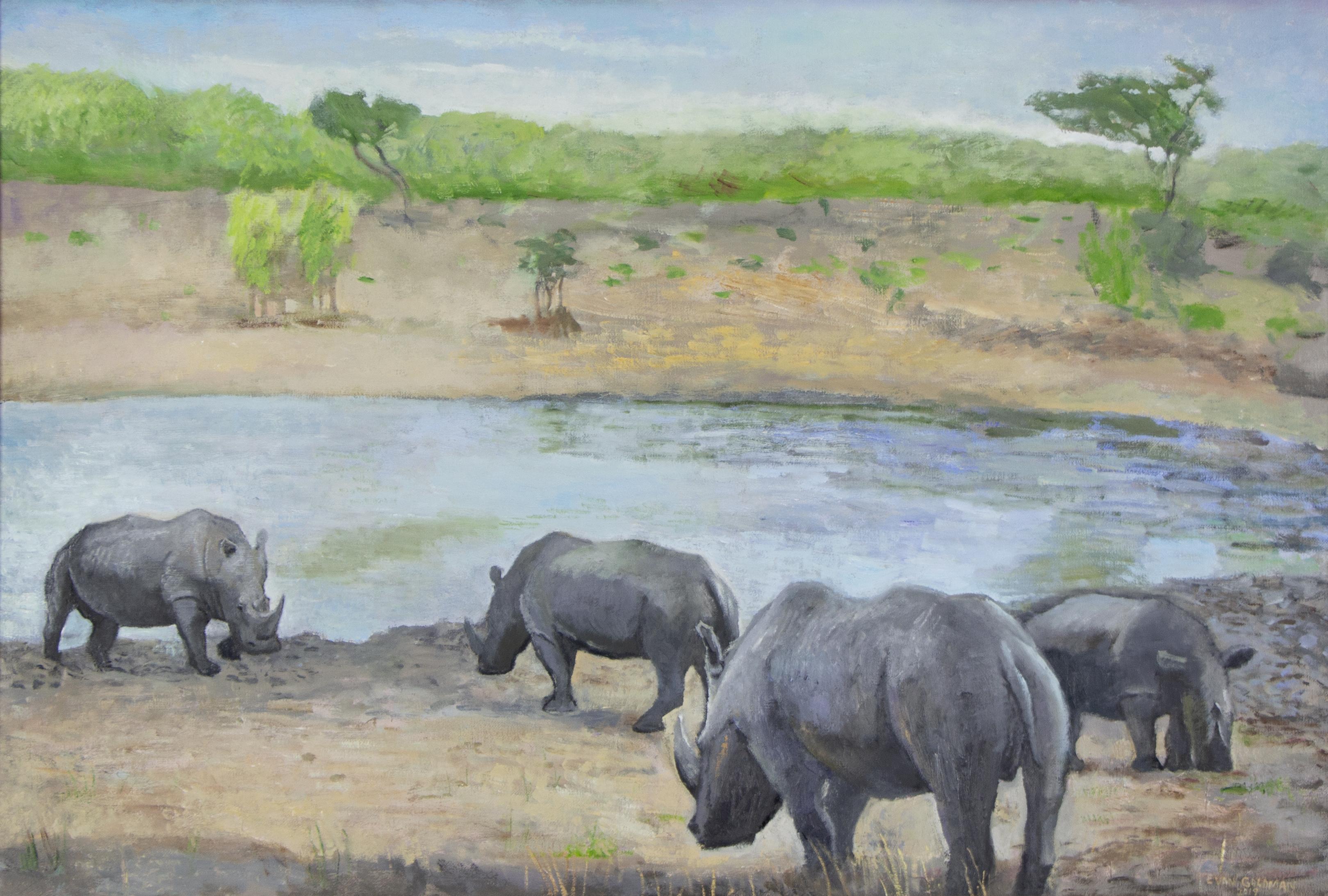 Rhinoceros  Stand-Off