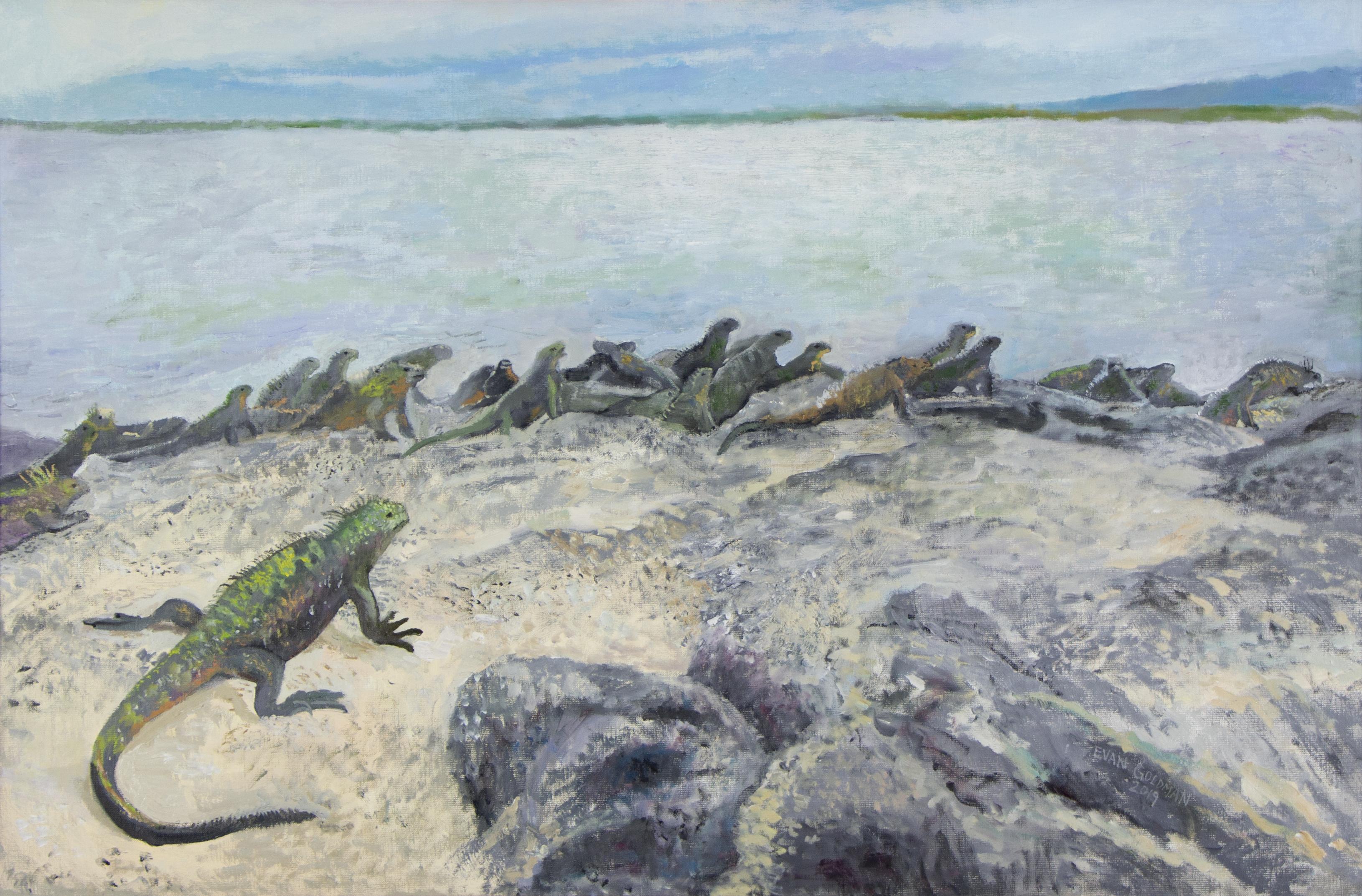 Iguanas' Paradise