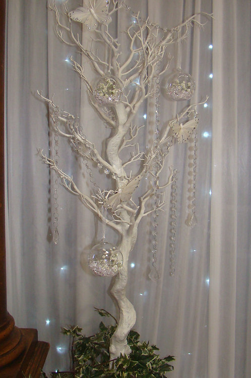 4 Foot Manzanita Tree