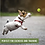 Thumbnail: Hyper Pet Tennis Balls For Dogs (Pet Safe Dog Toys for Exercise, Training, Hyper