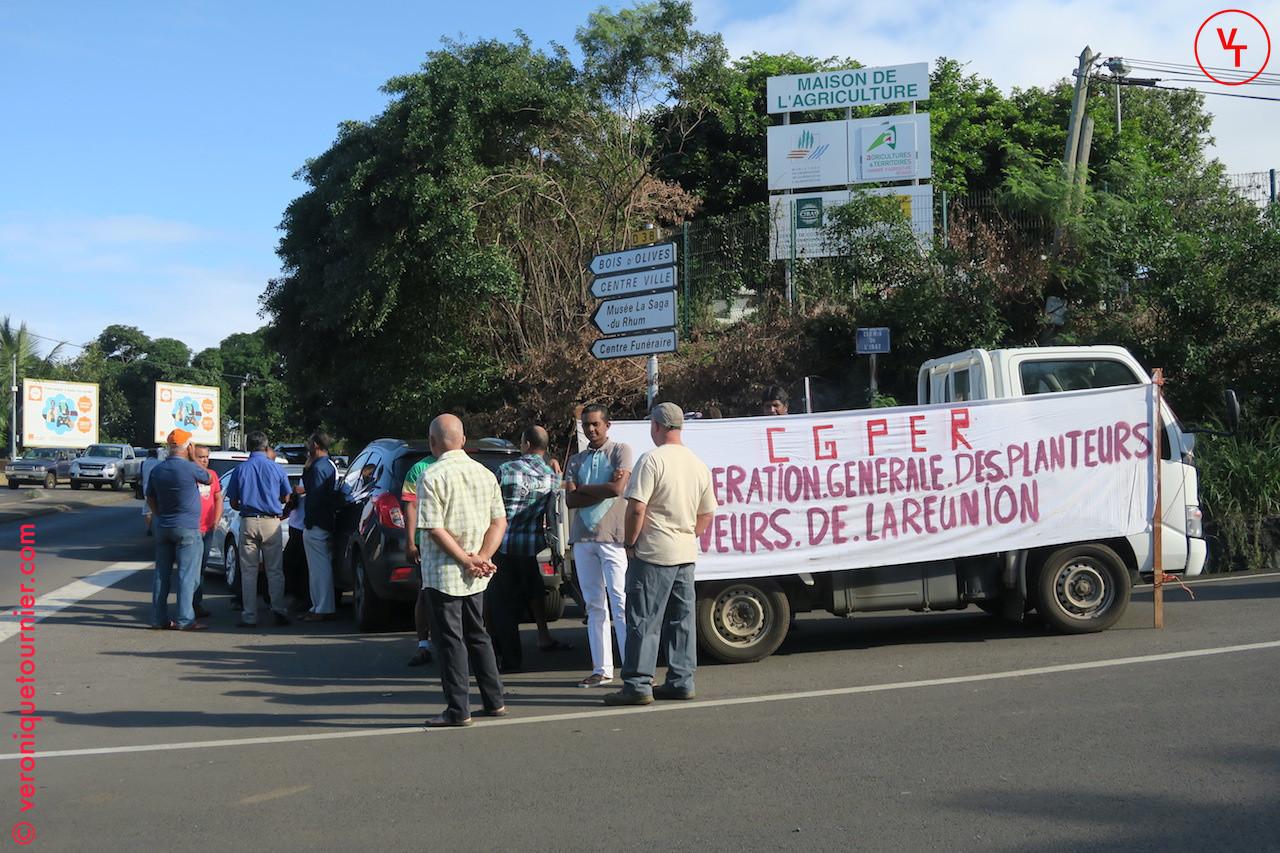 Manifestation de la CGPER (agriculteur) à Saint-Pierre (La Reunion) 2016
