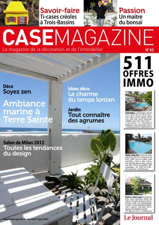 Case mag pdf_merged_page-0013.jpg