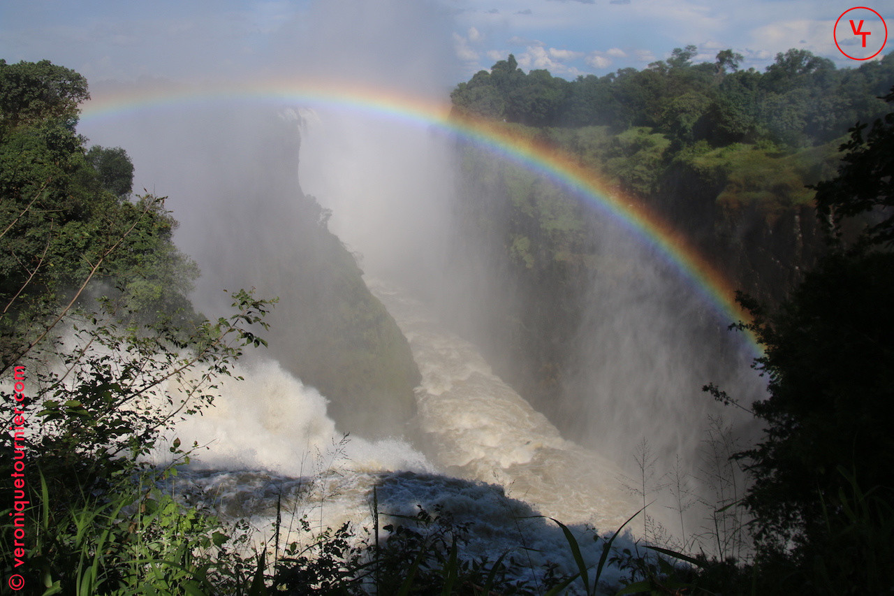Série_Out_of_Africa,_Zimbabwe,_2018_©_VT