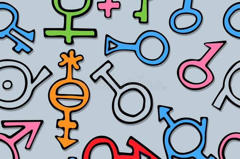 A Guys' Guide to Gender and Sexuality: