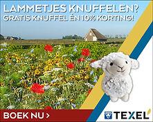 Banner Lammetjes Knuffelen