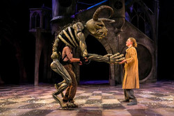 Beauty & the Beast at Chichester