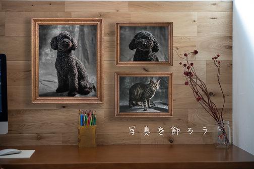 写真を飾ろう のコピー.jpg