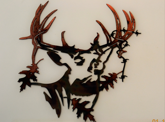 Barbed Wire Buck