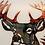 Thumbnail: Pretty Boy Buck