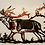 Thumbnail: Bull Elk from the Shadows