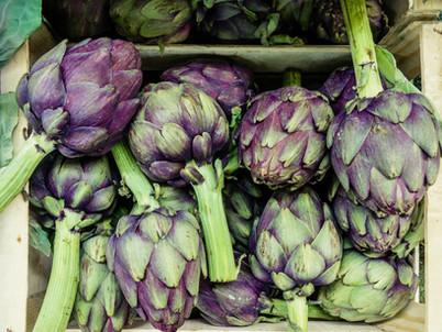 Prebiotics, butyrate and good gut health